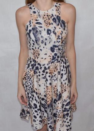 Платье в леопардовый принт miss selfridge сукня в леопардовий принт