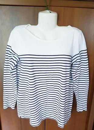 Полосатая блузка размера 54-56
