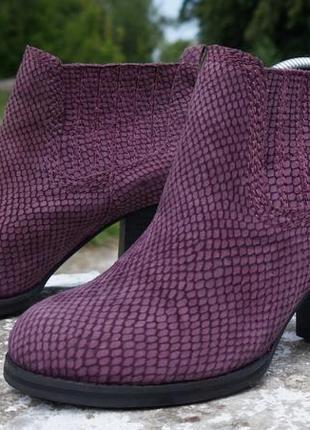 Жіночі туфлі, черевики, ботінки clarks