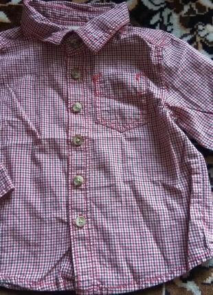 Крутячая рубашка cherokее