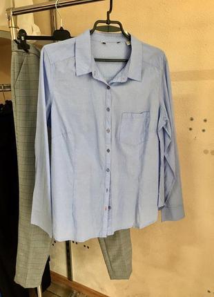 Хлопковая рубашка в мелкую полоску tcm p.42