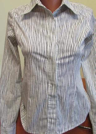 Жіноча сорочка / блуза forecast