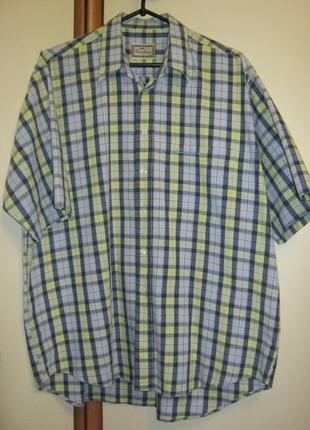 Мужская рубашка thomas burberry