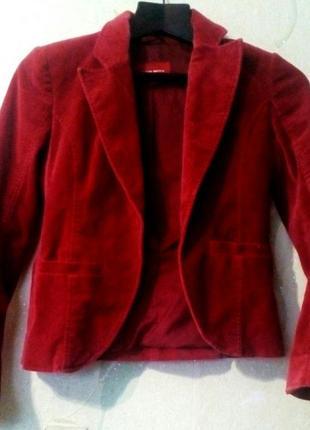 Вельветовый костюм (пиджак и юбка)