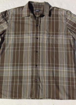 Mexx. хлопковая рубашка с коротким рукавом.
