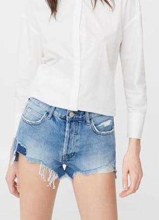 Новые рваные светло-голубые джинсовые шорты mango 40-m,l,джинсовые шорты l