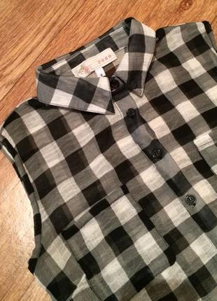 Cтильная блуза от cameo rose