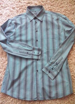 Стильная и красивая мужская рубашка от «casa blanca»