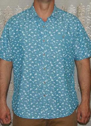 Рубашка бирюзовая птички