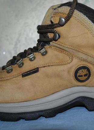 Треккинговые, кожаные, туристические ботинки timberland