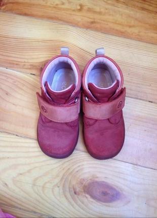 Демисезонные детские ботинки ecco