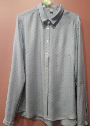 Рубашка голубого цвета в горошек