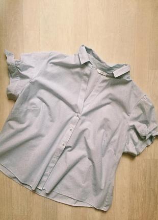 Рубашка в полоску от marks&spencer