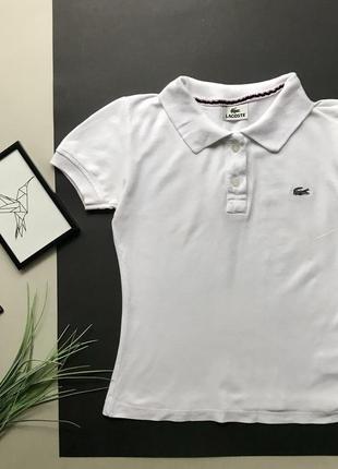 Белая футболка lacoste / белое поло lacoste s