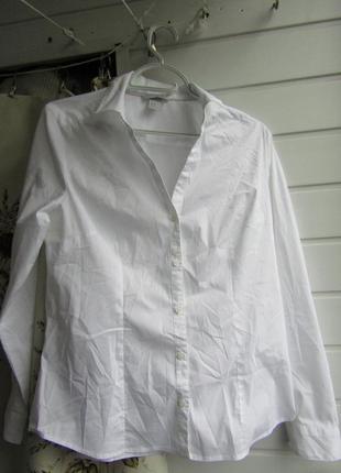 Блуза для офиса белоснежная/73%cotton.24%polyester.3%elastanе.