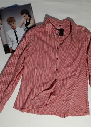 Женская рубашка в мелкую клетку блуза k&l ruppert большой размер