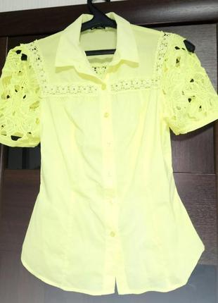 Красивая рубашка блузка a.m.n. amnezia