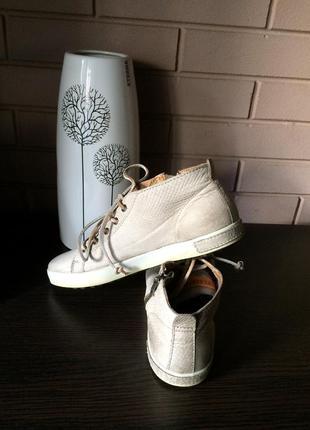 Кожаные ботинки кеды blackstone