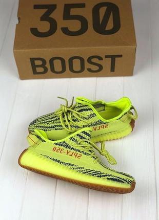 Yeezy boost 300