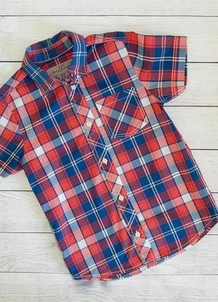 Хлопковая рубашка в клетку h&m с коротким рукавом для мальчика 4-5 лет 110 рост