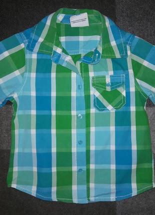Рубашка topolino на 2-3 года