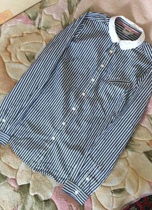 Полосатая, хлопковая рубашка в полоску