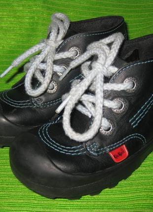 Ботинки kickers,р.24 стелька 16см кожа