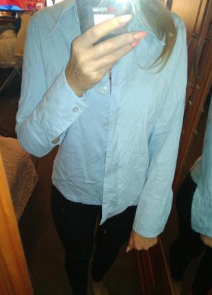 Рубашка базовая вещь-s m
