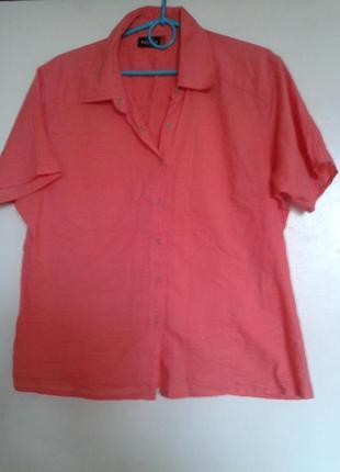Блуза рубашка benotti