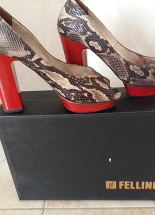Продам туфли fellini