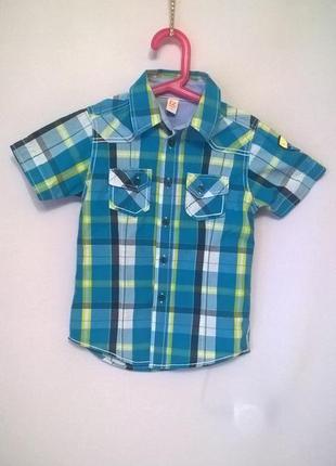 Стильная тениска для мальчика