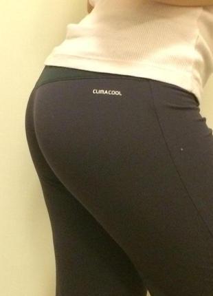 Новейшие спортивные брюки adidas