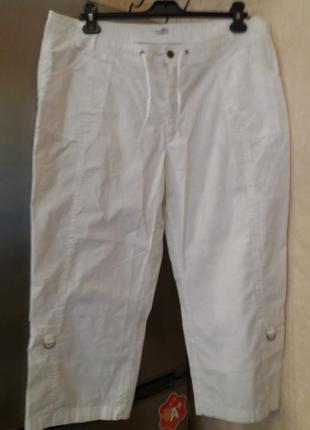 Укороченные брюки -plus-size----котон\эластан--22-24р