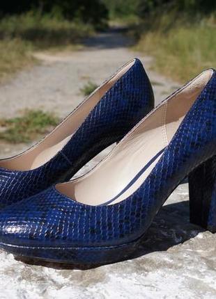 Жіночі шкіряні туфлі clarks kendra sienna dark