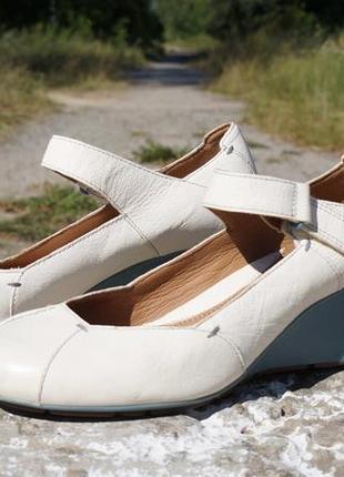 Жіночі шкіряні туфлі clarks