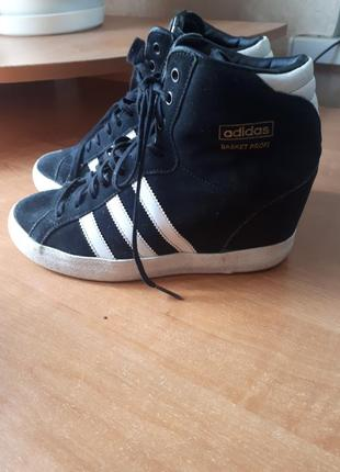 Кросовки adidas originals basket profi