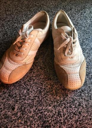 Кросівки ecco натуральна шкіра
