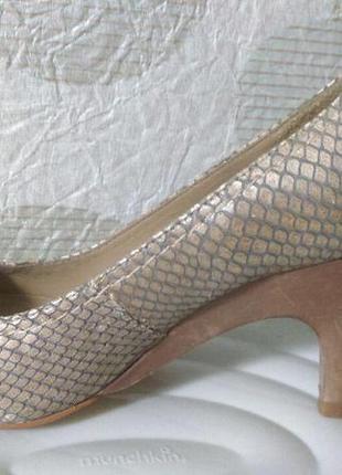 Дизайнерские туфли бразилия