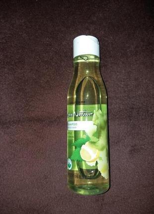 Шампунь для жирных волос «крапива и лимон»