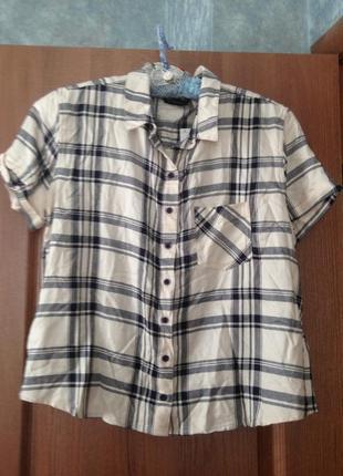 Стильная рубашка в летку от dorothy perkins р.14 xl. новая с ярлыками.