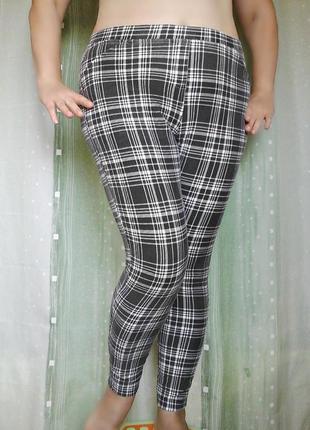 Леггинсы, лосины, трикотажные брюки, 70% хлопок