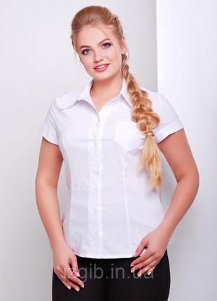 Классическая женская рубашка 48р хлопок 70%! новая в упаковке