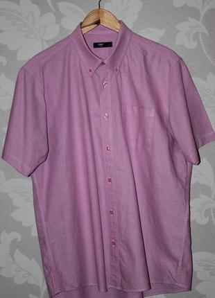 Фирменная рубашка cotton