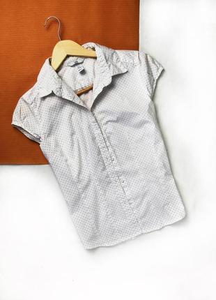 Блузка безрукавка с воротником в горох