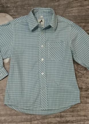 Рубашка palomino 98см