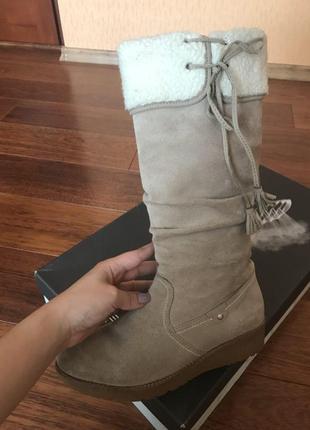 Замшеві чобітки geox