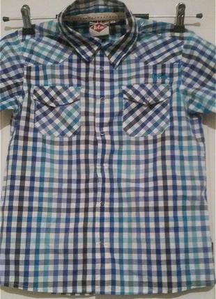 Рубашка с коротким рукавом. ли купер. на кнопках.