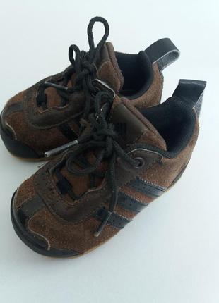 Кросівки від adidas