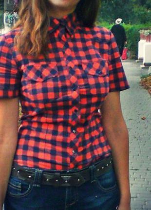 Рубашка блуза в клетку на кнопках кофта футболка поло