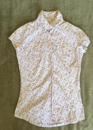 Хорошенькая рубашка с коротким рукавом